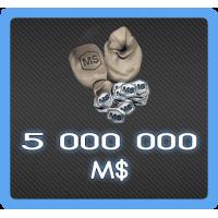 5 000 000 MS